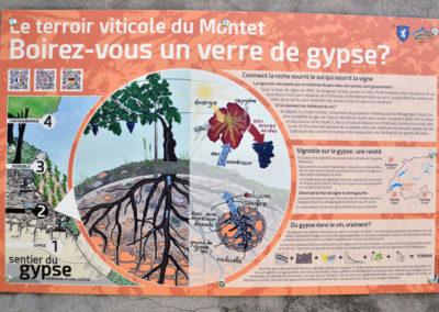 """<a href=""""https://bureau-relief.ch/sentier-du-gypse-bex-vd/"""" rel=""""noopener noreferrer"""" target=""""_blank"""">→ Sentier du gypse de la colline du Montet à Bex (VD) - géologie et terroir viticole</a>"""